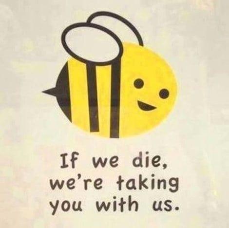 Cute+Bee+Cartoon.jpgCute+Bee+Cartoon