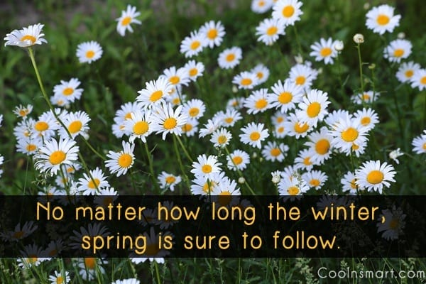 Spring+Quotes.jpgSpring+Quotes
