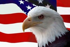 American+Eagle.jpgAmerican+Eagle