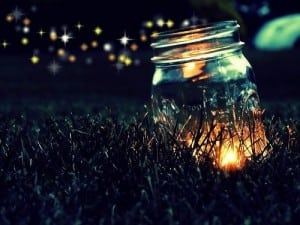 Fireflies+in+a+Jar.jpgFireflies+in+a+Jar